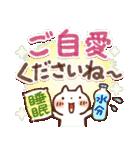 夏にやさしいスタンプ✨【大きい文字】(個別スタンプ:20)