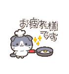 はちわれスコちゃん(個別スタンプ:01)