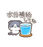 はちわれスコちゃん(個別スタンプ:03)