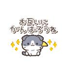 はちわれスコちゃん(個別スタンプ:08)