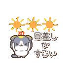 はちわれスコちゃん(個別スタンプ:14)