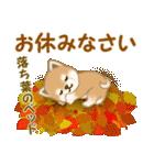 よちよち豆柴 秋の毎日(個別スタンプ:5)