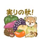 よちよち豆柴 秋の毎日(個別スタンプ:20)