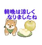 よちよち豆柴 秋の毎日(個別スタンプ:25)