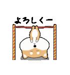 柴犬の動く!極日常スタンプ(個別スタンプ:4)