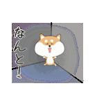 柴犬の動く!極日常スタンプ(個別スタンプ:11)