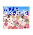 三毛猫ツインズ 秋の毎日(個別スタンプ:1)