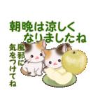 三毛猫ツインズ 秋の毎日(個別スタンプ:25)