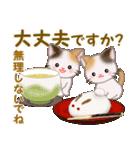 三毛猫ツインズ 秋の毎日(個別スタンプ:29)