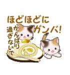 三毛猫ツインズ 秋の毎日(個別スタンプ:32)