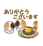 三毛猫ツインズ 秋の毎日(個別スタンプ:33)