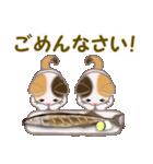 三毛猫ツインズ 秋の毎日(個別スタンプ:36)
