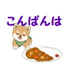 よちよち豆柴 おいしい毎日(個別スタンプ:4)