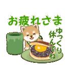 よちよち豆柴 おいしい毎日(個別スタンプ:13)