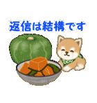 よちよち豆柴 おいしい毎日(個別スタンプ:37)