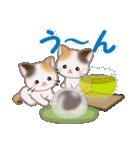 三毛猫ツインズ おいしい毎日(個別スタンプ:25)