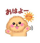 毎日使えるかわいい♥トイプードル「初秋」(個別スタンプ:01)