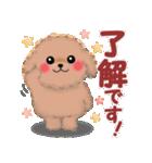毎日使えるかわいい♥トイプードル「初秋」(個別スタンプ:05)