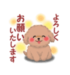 毎日使えるかわいい♥トイプードル「初秋」(個別スタンプ:20)
