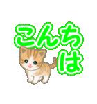 ちび猫 よく使うでか文字(個別スタンプ:3)