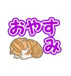 ちび猫 よく使うでか文字(個別スタンプ:5)
