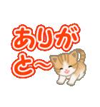 ちび猫 よく使うでか文字(個別スタンプ:13)