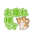 ちび猫 よく使うでか文字(個別スタンプ:17)