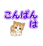 ちび猫 でか文字敬語(個別スタンプ:3)