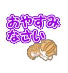 ちび猫 でか文字敬語(個別スタンプ:4)