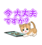 ちび猫 でか文字敬語(個別スタンプ:5)