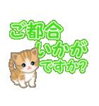 ちび猫 でか文字敬語(個別スタンプ:6)