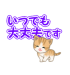 ちび猫 でか文字敬語(個別スタンプ:7)