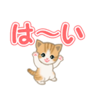 ちび猫 でか文字敬語(個別スタンプ:13)