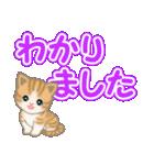 ちび猫 でか文字敬語(個別スタンプ:14)