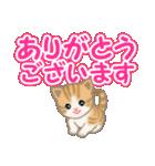 ちび猫 でか文字敬語(個別スタンプ:17)