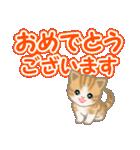 ちび猫 でか文字敬語(個別スタンプ:18)