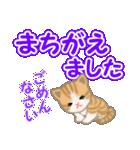 ちび猫 でか文字敬語(個別スタンプ:24)