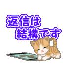 ちび猫 でか文字敬語(個別スタンプ:25)