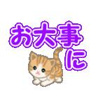 ちび猫 でか文字敬語(個別スタンプ:28)