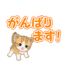 ちび猫 でか文字敬語(個別スタンプ:29)