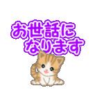 ちび猫 でか文字敬語(個別スタンプ:33)