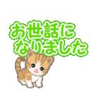 ちび猫 でか文字敬語(個別スタンプ:34)