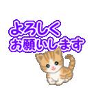 ちび猫 でか文字敬語(個別スタンプ:35)