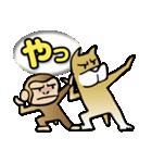 犬猿の仲間(個別スタンプ:24)