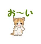 ちび猫 家族連絡(個別スタンプ:3)