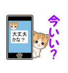 ちび猫 家族連絡(個別スタンプ:4)