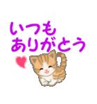 ちび猫 家族連絡(個別スタンプ:11)