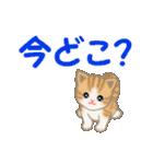 ちび猫 家族連絡(個別スタンプ:17)