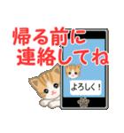 ちび猫 家族連絡(個別スタンプ:19)