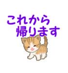 ちび猫 家族連絡(個別スタンプ:20)